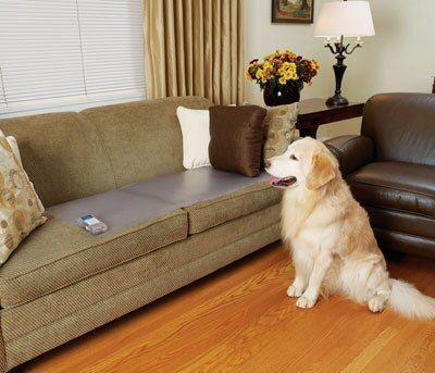 Biedētājs Ipetdog Pet Training Mat M3016