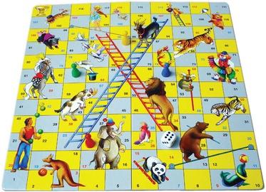 Galda spēle Robins Cirks