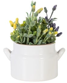 Home4you Plant In Pot In Garden H12cm White Ceramic
