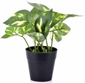 Mondex Artificial Flower In Pot 16cm