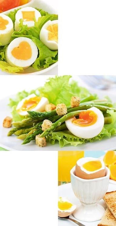 Steba Egg Boiler EK 6
