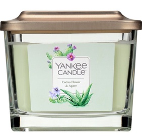Yankee Candles Elevation Collection Cactus Flower & Agave Candle 347g