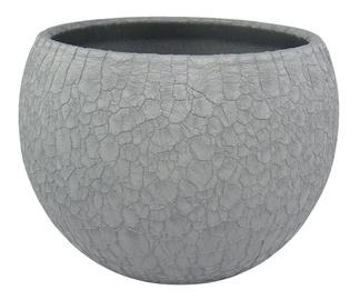 Вазон SN Ceramic Pot Lizard Ø12cm Grey