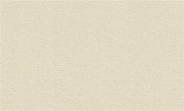 Viniliniai tapetai 936216