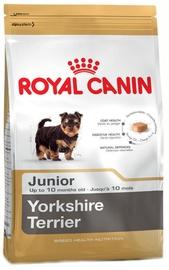 Royal Canin BHN Yorkshire Terrier Junior 7.5kg