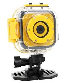 Seikluskaamera Panox Champion HD 720P