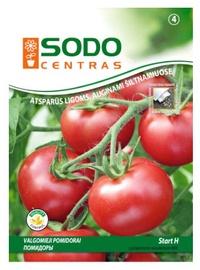 Seemned Tomat Start