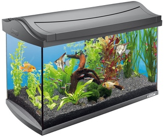 Akvariumas Tetra AquaArt, pilkas, 60 l, su įranga