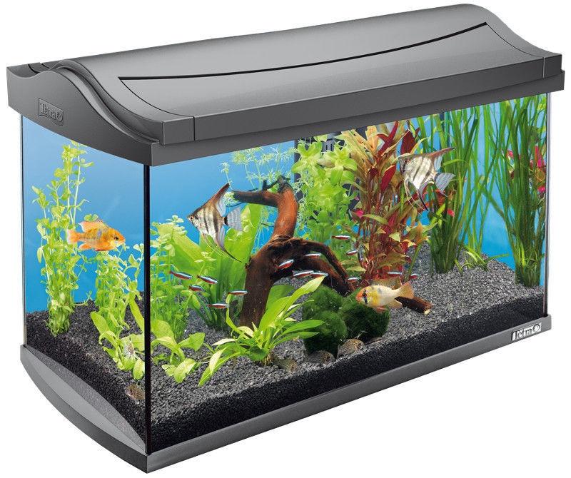 Tetra AquaArt Aquarium 60L Grey