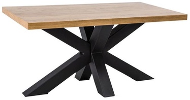 Kavos staliukas Signal Meble Cross B Oak/Black, 1100x530x600 mm