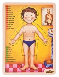 Woodyland Educational Puzzle Human Body 13pcs 90332