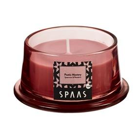 Ароматическая свеча Spaas Spearmint&Mandarin, 15 h