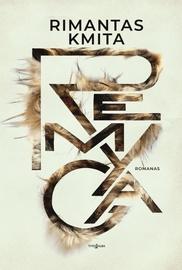 Knyga Remyga