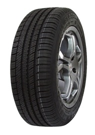 Automobilio padanga King Meiler AS-1, 205/55 R16, 91H