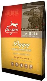 Orijen Puppy Food 340g