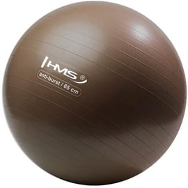 HMS Gym Ball YB02 65cm Brown