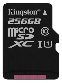 Kingston Canvas Select 256GB microSDXC UHS-I Class 10