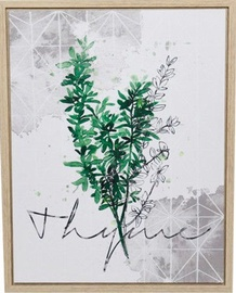 Home4you Print Picture Nature 40x50cm Thyme