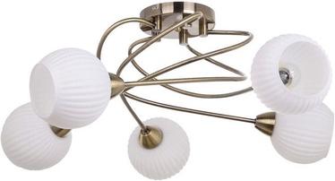 Verners 148259 RIBERO Brass