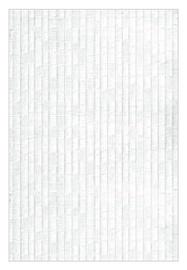Keraminės sienų plytelės Luster White, 30 x 20 cm