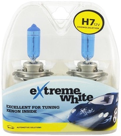 Bosma H7 12V 55W Extreme White Light Bulb 2pcs