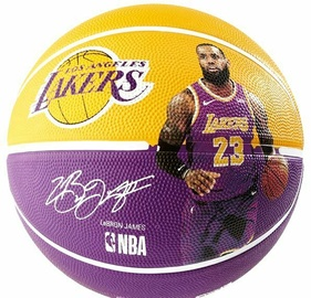 Spalding Cleveland Cavaliers LeBron James 7