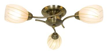 Lubinis šviestuvas Okko Gita CL16173-3-AB, 3X40W, E14