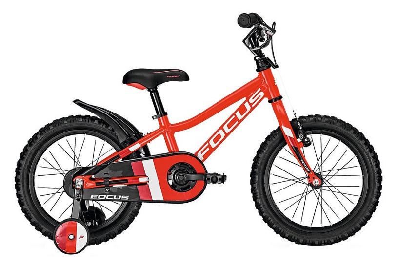 Vaikiškas dviratis Focus Raven Rookie 16 Red 18