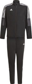 Adidas Tiro Junior Suit GP1027 Black 152cm