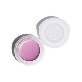 Shiseido Paperlight Cream Eye Color 6g VI304