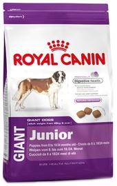 Royal Canin SHN Giant Junior 15kg