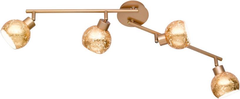 Wofi Fara Wall Lamp 4x28W G9 Gold