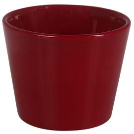 Verners Dallas Style Flower Pot Bordo 7cm