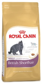 Royal Canin FBN British Shorthair 10kg