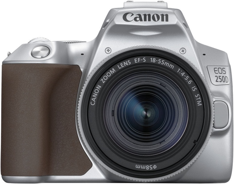 Canon EOS 250D + 18-55mm IS STM Kit Silver