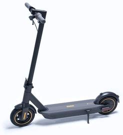 Elektrinis paspirtukas Ninebot by Segway Kickscooter Max G30