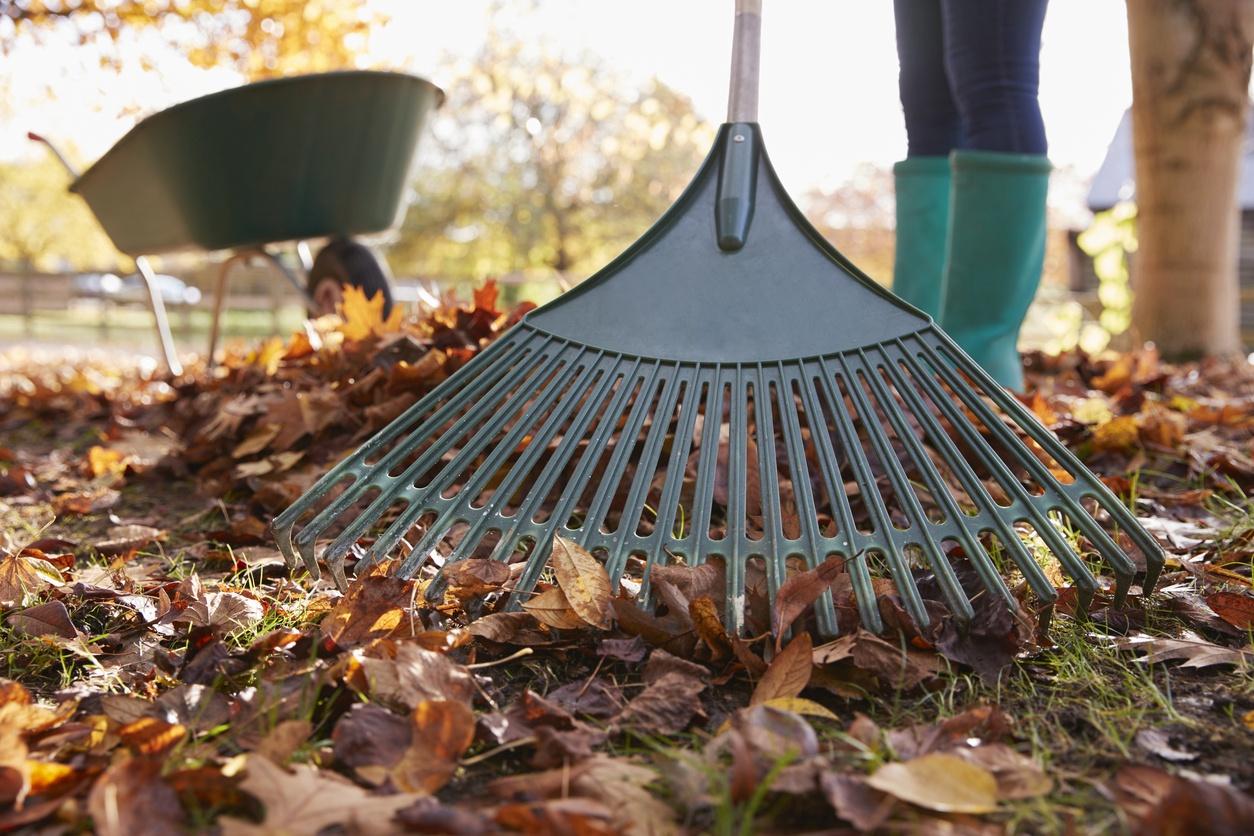 4ff8e70e5b3 Sügisesed aiatööd kerge vaevaga: nipid lehtede riisumiseks - Krauta.ee