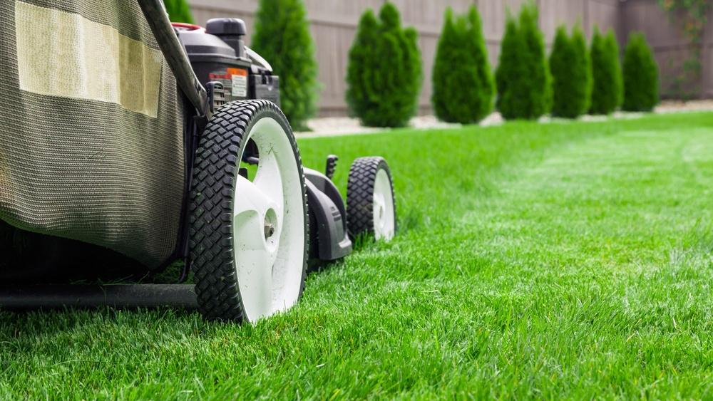 b513c6b2f3a Milline muruniiduk valida, et niitmine oleks meeldiv tegevus ja töö saaks  tehtud kiirelt ja mugavalt? Sellest artiklist leiad nõuandeid just sulle  sobiva ...