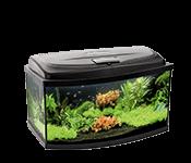 Аквариумы и оснащение для аквариумов
