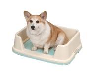 Šunų tualetai