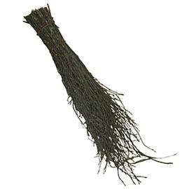 Kaseluud, 50 cm
