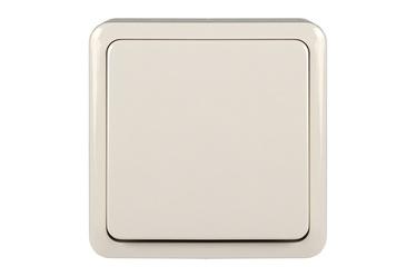 Lihtlüliti pinnapealne raamiga valge