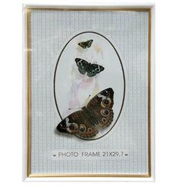 Nuotraukų rėmelis Drugys 3976, 21 x 29,7 cm
