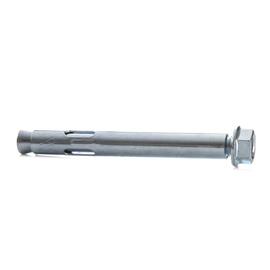 Inkarinis varžtas su metaliniu kaiščiu, 12x99 mm