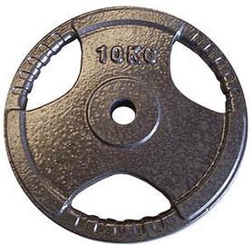 Diskinis svarmuo YLPS06, 10 kg