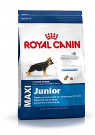 Koeratoit Royal Canin Maxi Junior, 4 kg