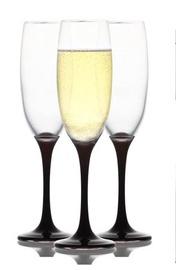 Šampanjaklaaside komplekt 6 tk VEN541PA02