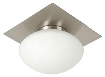 Sieninis šviestuvas Joanna-1