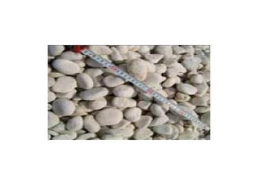 Dekoratyviniai akmenys, balti, 15–30 mm, 20 kg