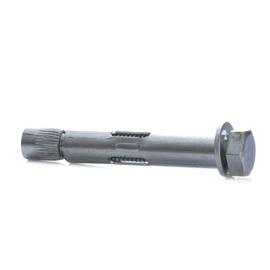 Inkarinis varžtas su metaliniu kaiščiu, 10x50 mm, 5 vnt.
